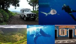 10 coisas para fazer na Ilha do Faial, nos Açores