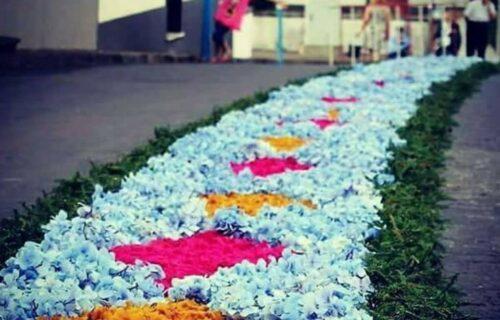 Tradições – Tapete de Flores