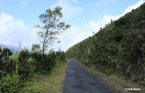Caminhos – Natureza