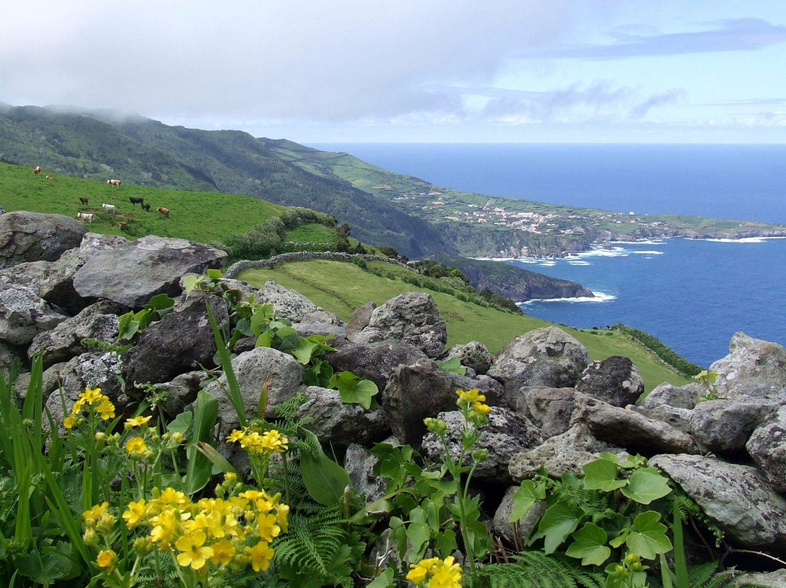 Ponta Delgada (Flores)