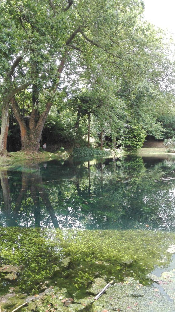 Jardim das furnas