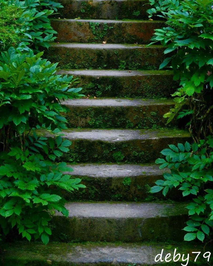 Recanto – Escadas – Parque Terra Nostra