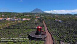 Paisagem Cultural da Vinha do Pico