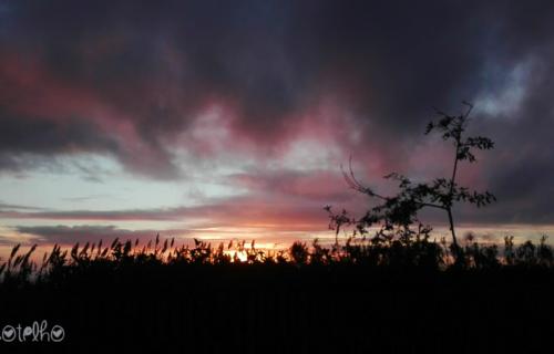Pôr do Sol na Candelária