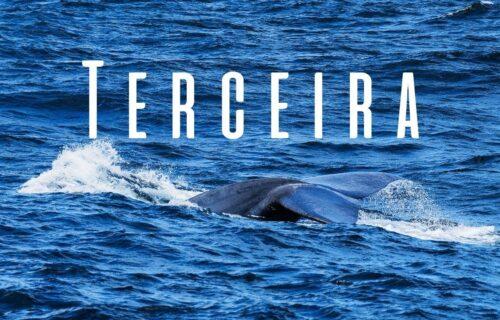 Visitar Terceira - Açores