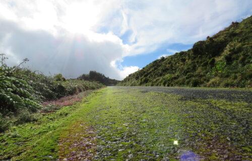 Caminho para Monte Escuro/Lombadas