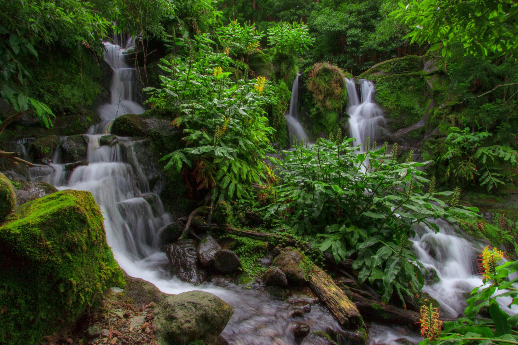 Cascata – Água D'Alto – Vila Franca do Campo