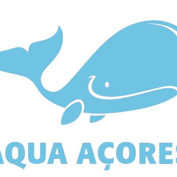 Aqua Açores – Whale Watching