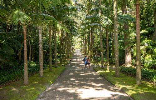 Jardins Terra Nostra