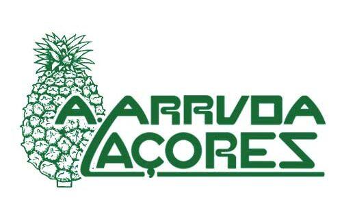 Plantação de Ananases Augusto Arruda