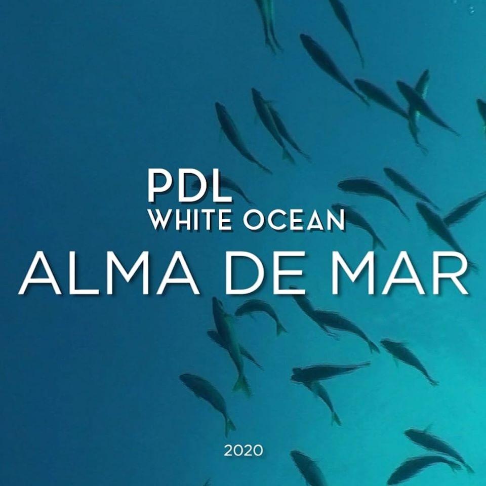 PDL White Ocean 2020
