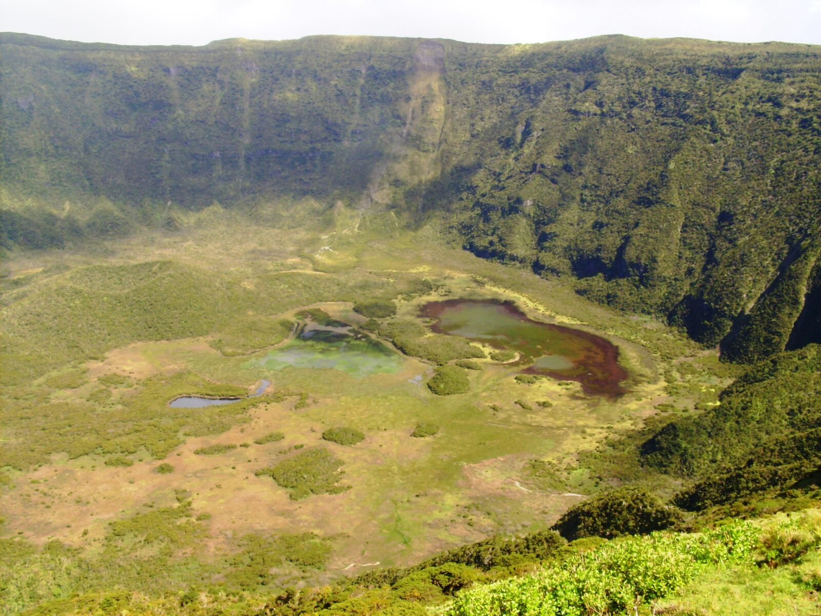 Caldeira - Faial - Açores