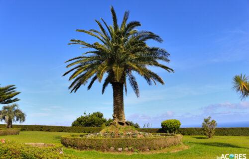 Miradouro da Ponto do Sossego – Jardim