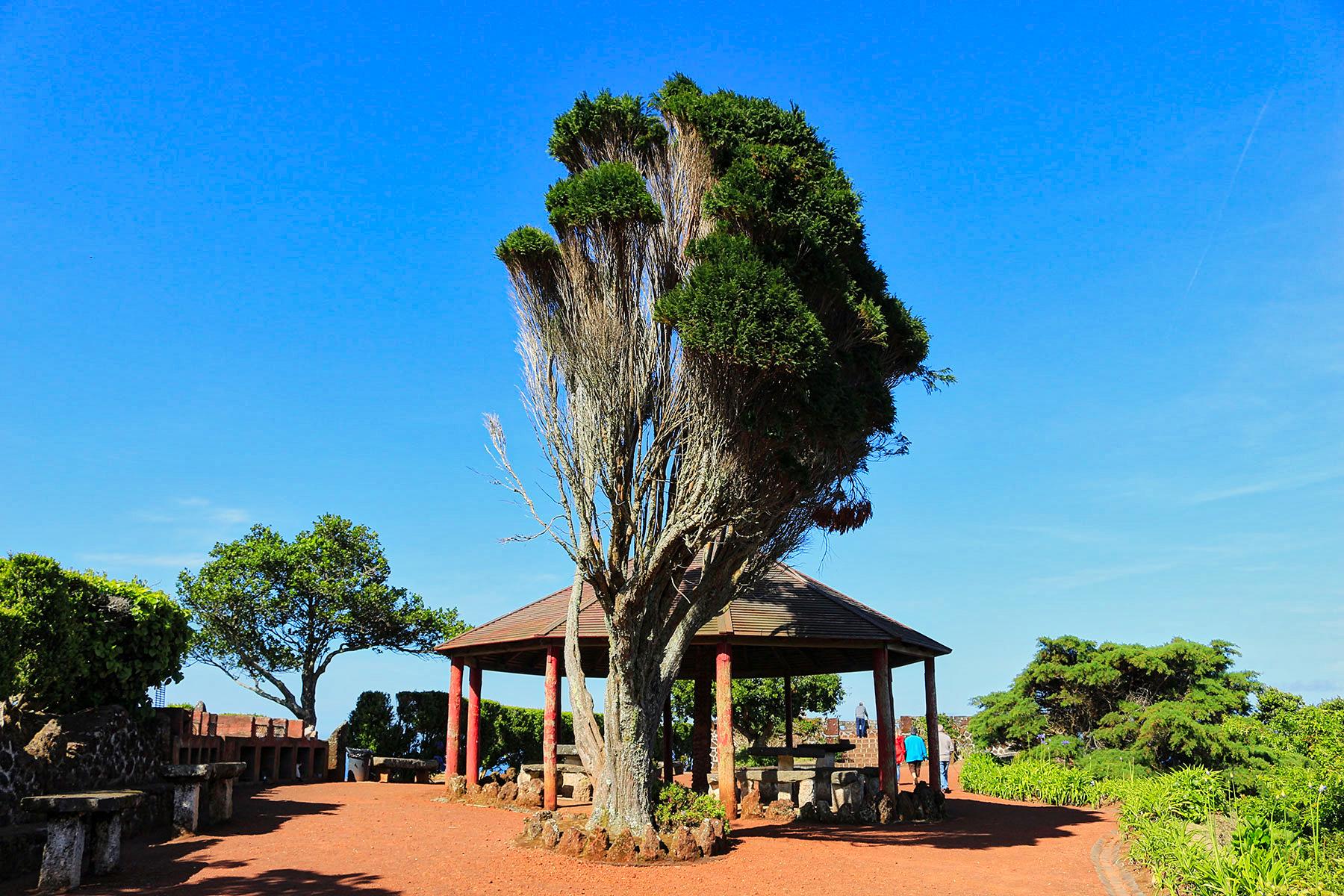 Miradouro da Ponta da Madrugada – Jardim – Nordeste
