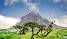 Ilha do Pico – o que visitar e pontos de interesse