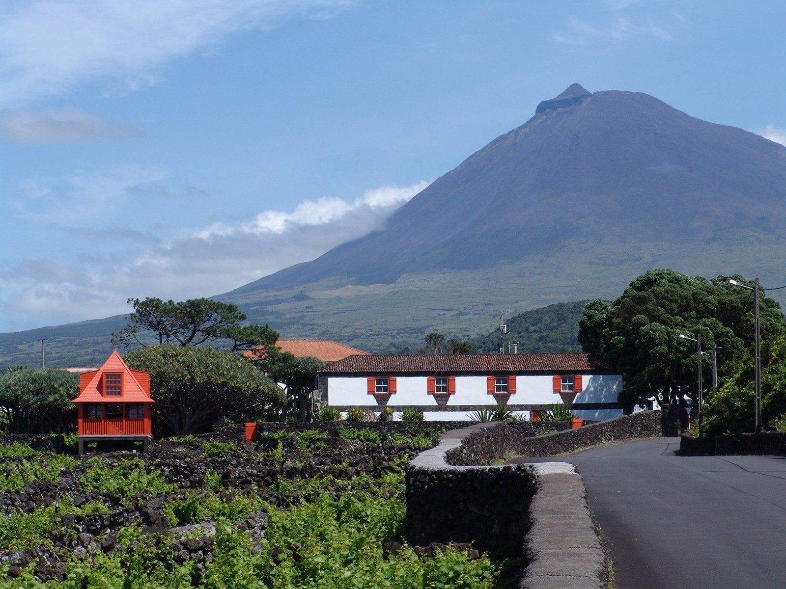 Museu do Vinho, Ilha do PIco, Açores