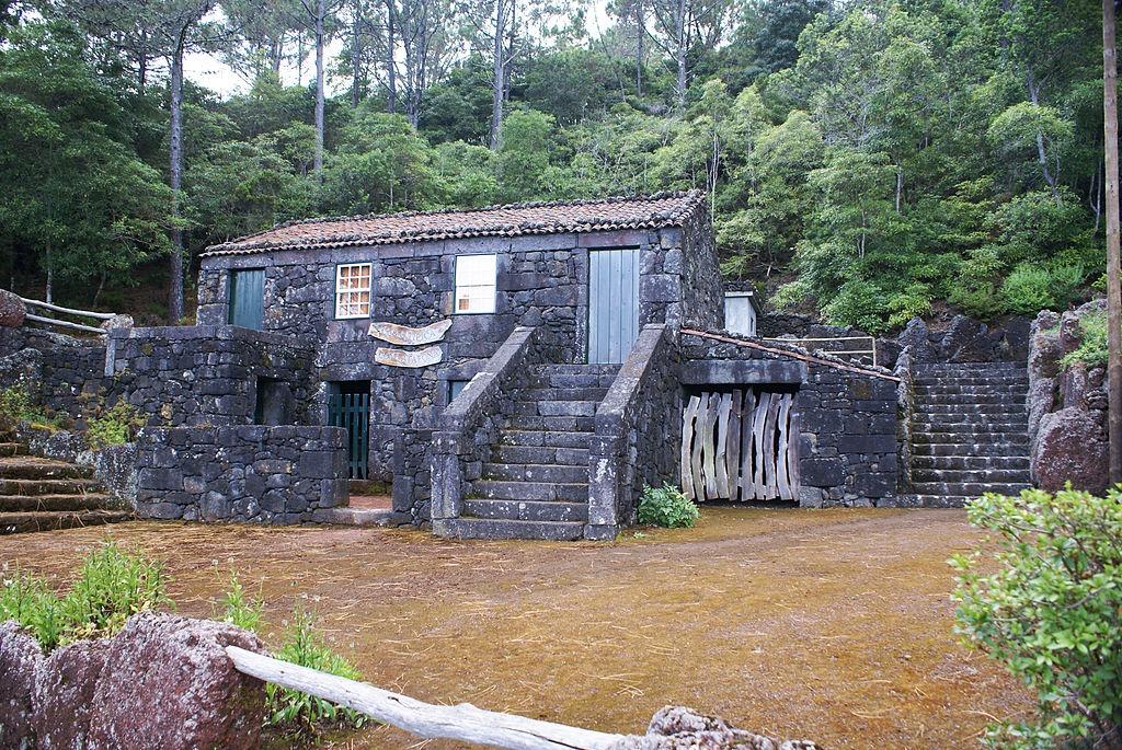 Parque Florestal da Prainha, Pico, Açores