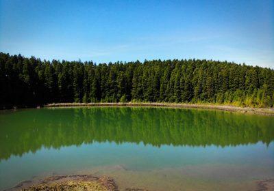 Lagoa do Canário 04 - São Miguel - Açores