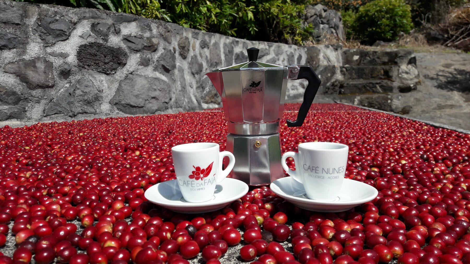 Café da Fajã dos Vimes - Café Nunes - São Jorge, Açores