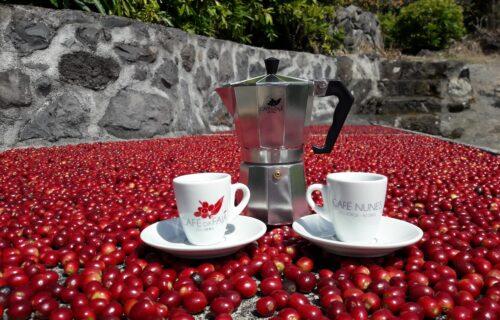 Café Nunes (Café da Fajã dos Vimes) – Ilha de São Jorge