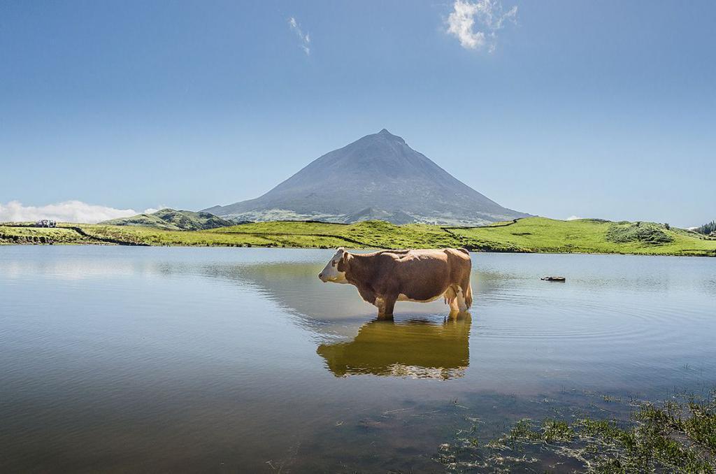 Lagoa do Capitão - Pico, Açores