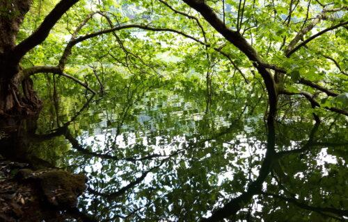 Lagoa do Congro ,