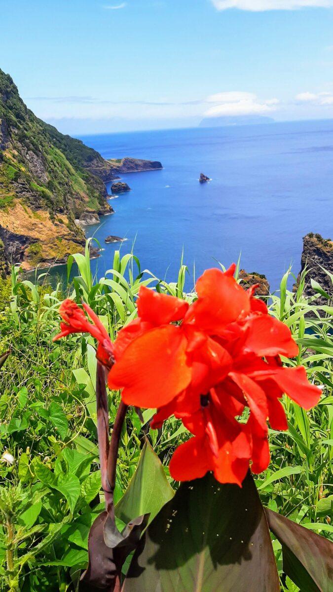Ilha das Flores