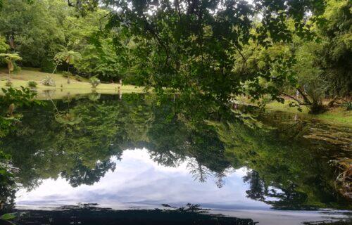 Parque D Beatriz