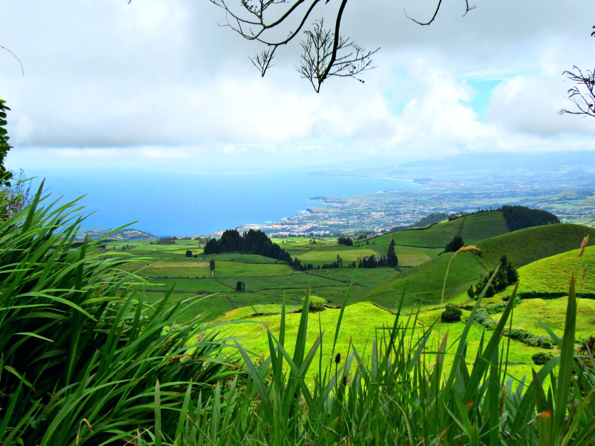 Cores dos Açores