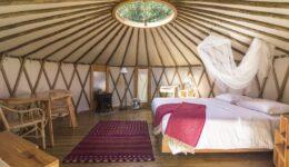 Yurt - Azul Singular