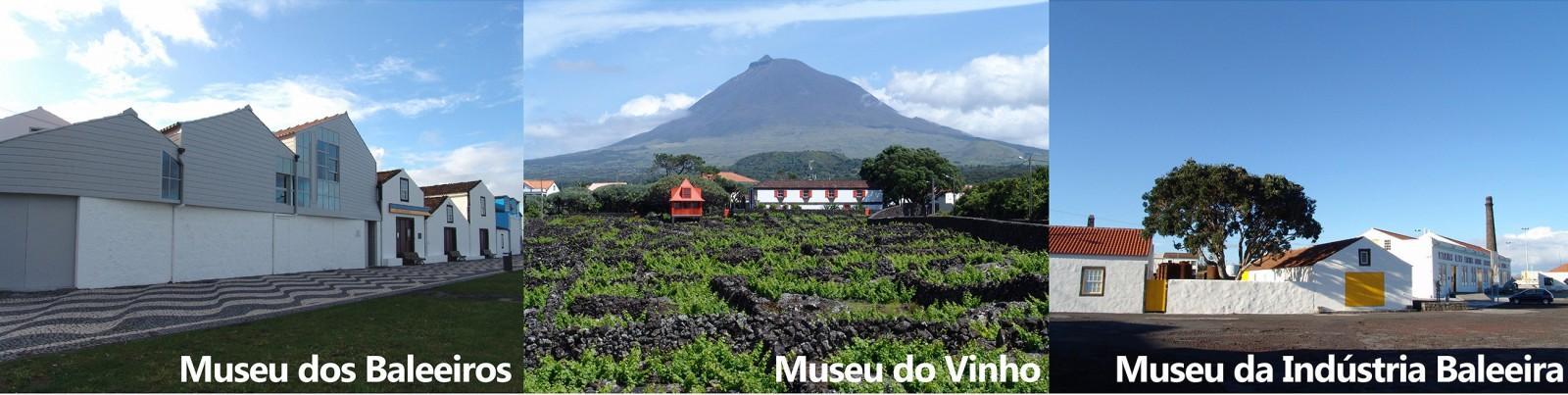 Museu do Pico