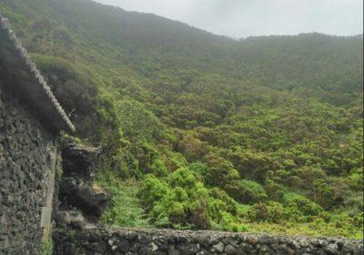 Algar do Carvão - Interior - Fotos - Terceira, Açores