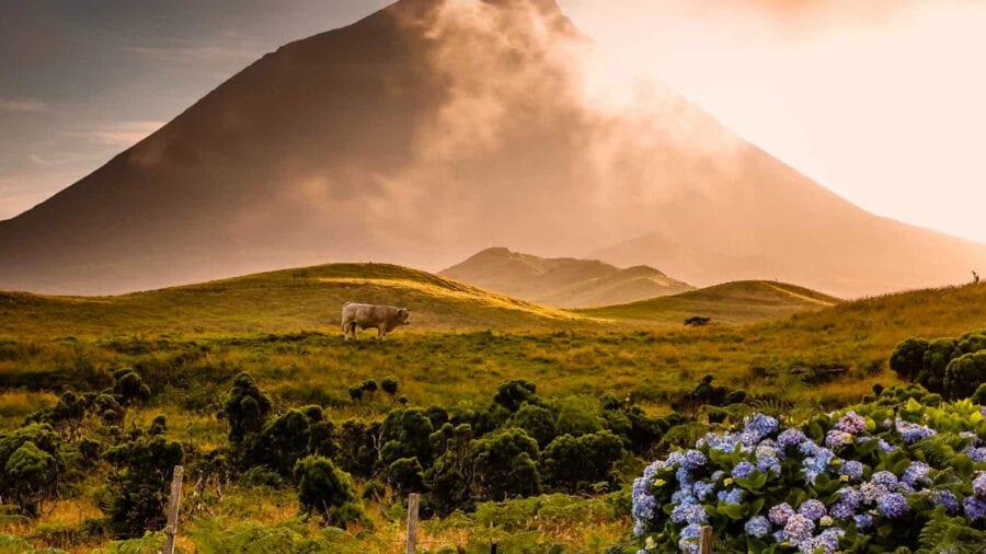 Pico | 3 noites com Voos e Hotel ou Alojamento Rural