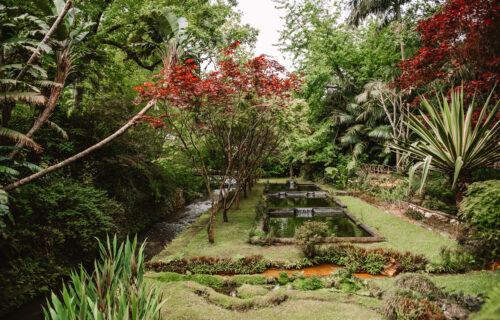 Parque Terra Nostra I