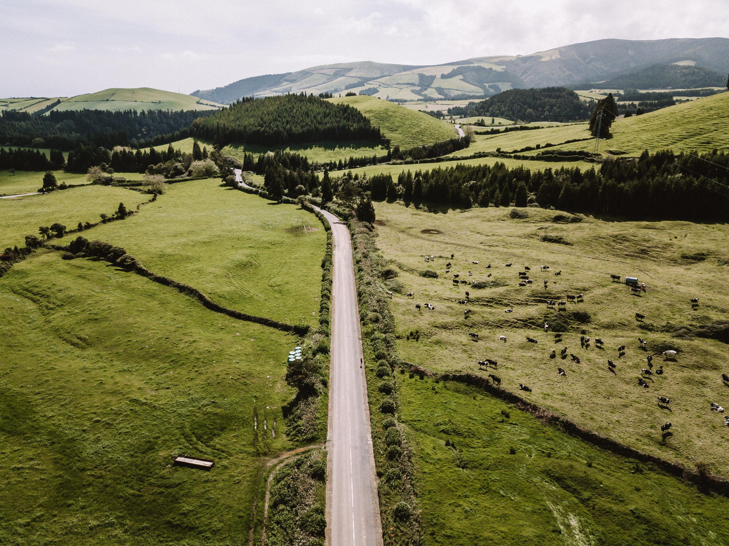 Estradas de São Miguel