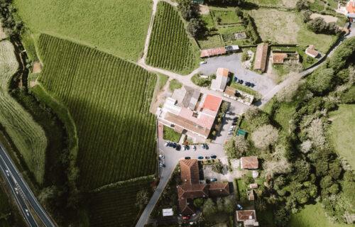 Fábrica e Plantação Chá Gorreana – Vista Aérea