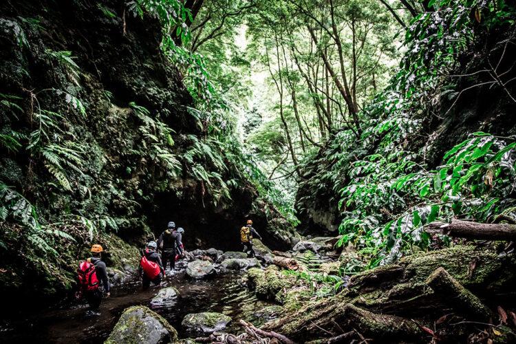 Canyoning nos Açores