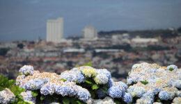 Não diga a ninguém: revelamos a altura do ano ideal para comprar a sua viagem aos Açores