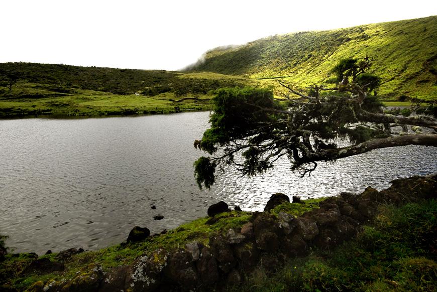 Lagoa do Paul - Ilha do Pico, Açores