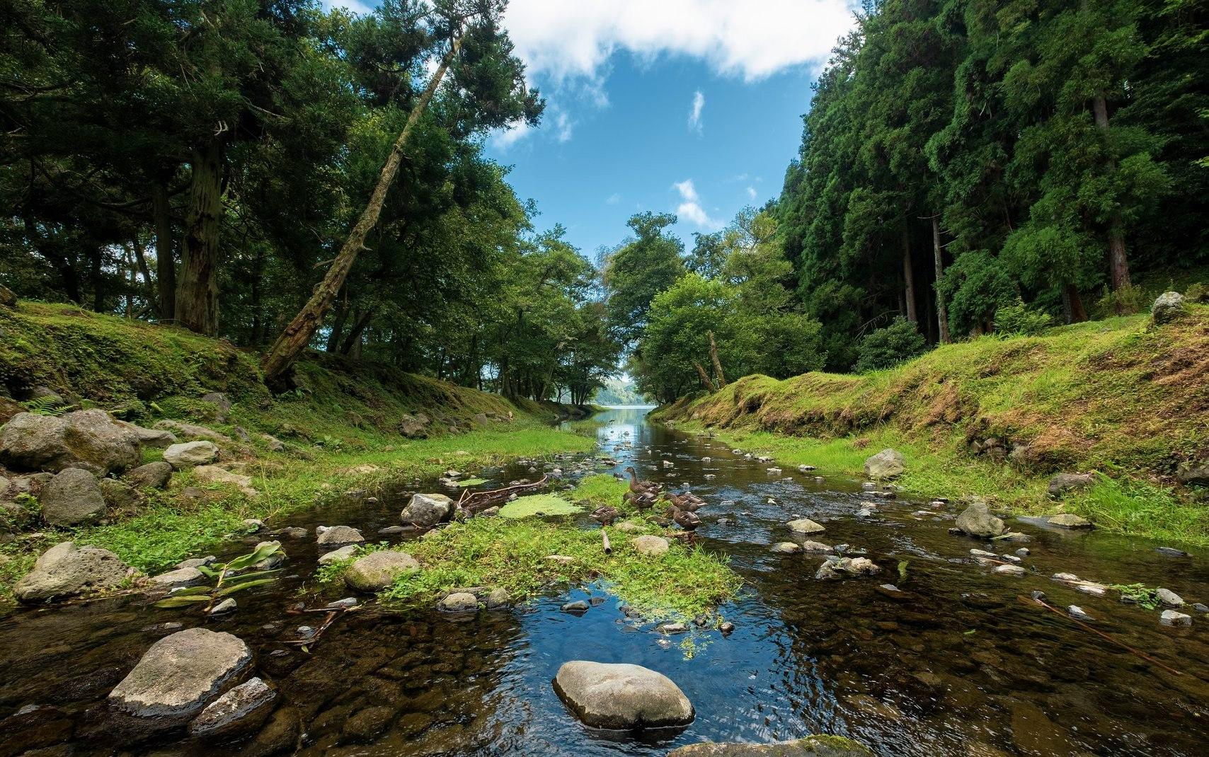 Parque Grená - Furnas - São Miguel - Açores