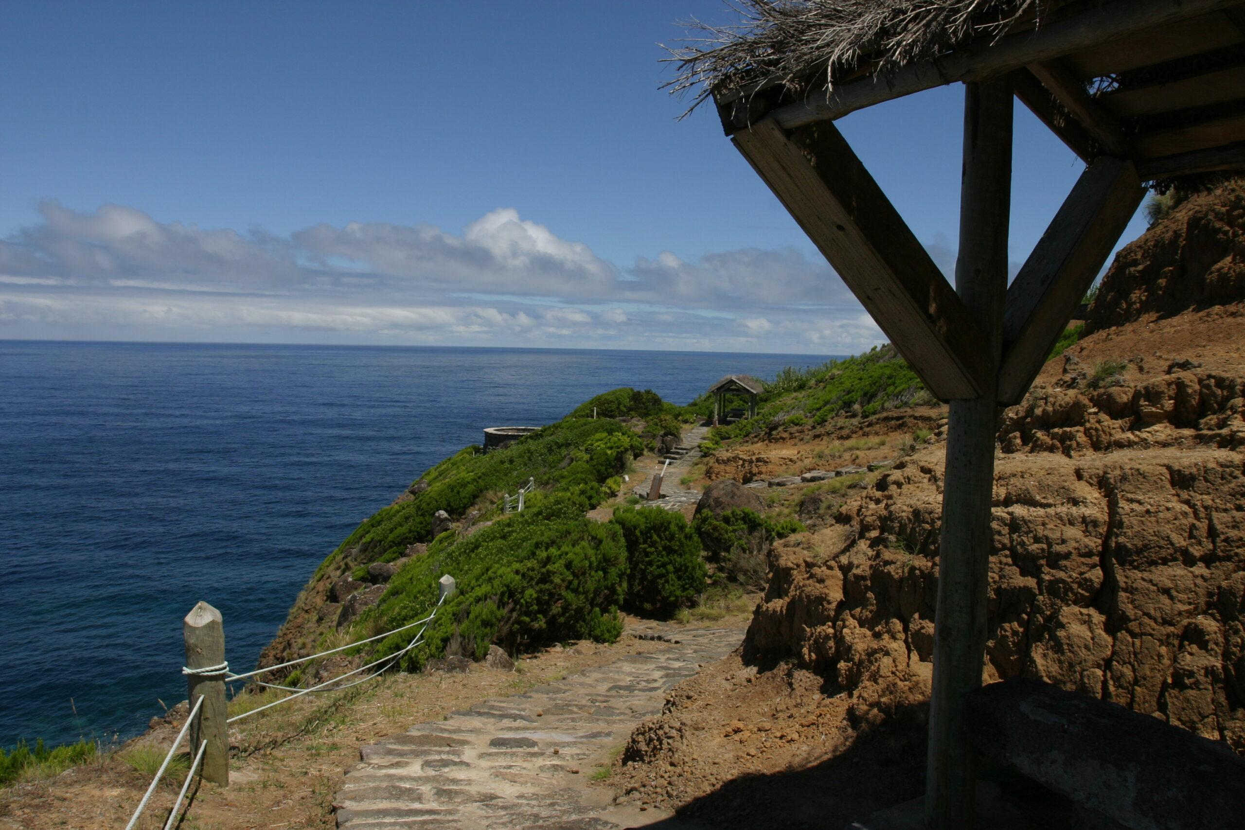 Miradouro Parque Endémico - Nordeste - São Miguel, Açores