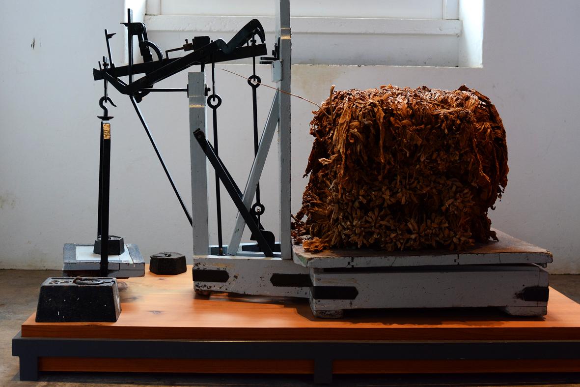 Museu do Tabaco da Maia - São Miguel - Açores