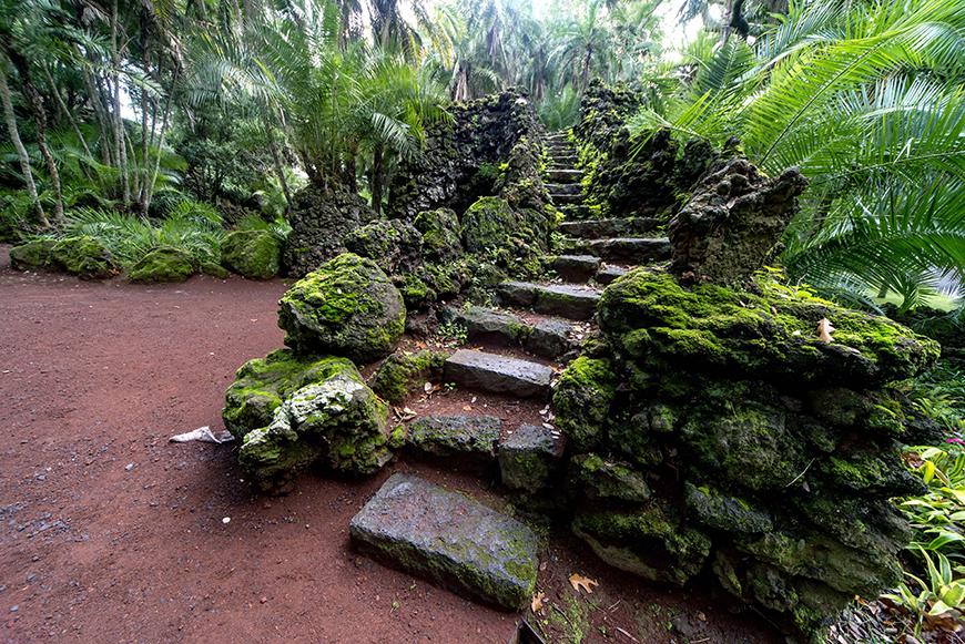 Jardim António Borges - São Miguel - Açores