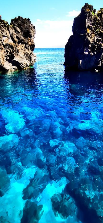 Azorean Blue