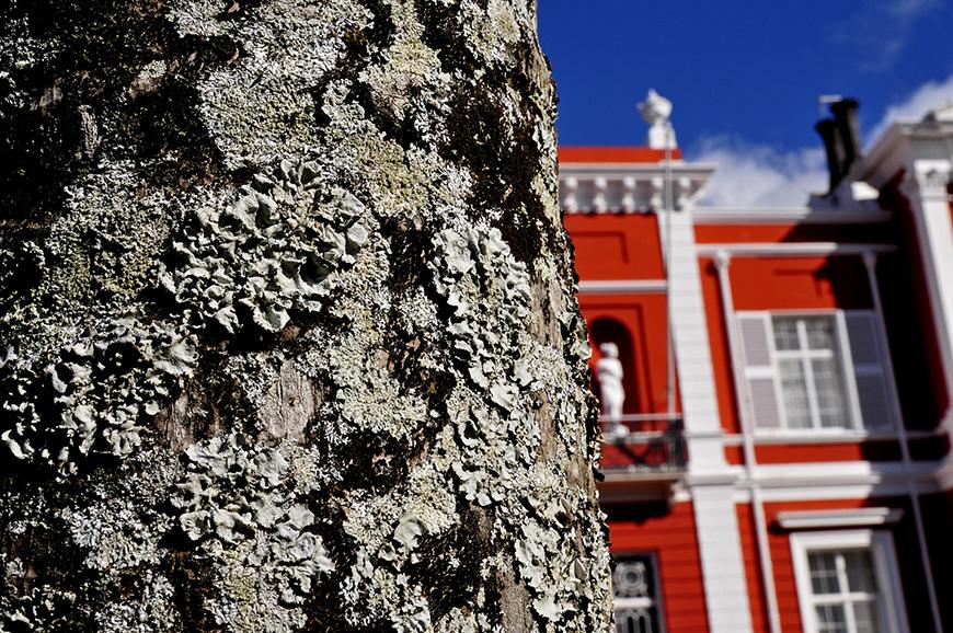 Palácio e Jardim de Sant'Ana - São Miguel, Açores