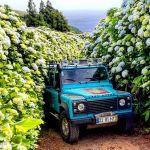 Greenzone Azores Azores